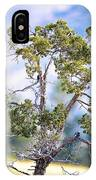 Bluebird Tree IPhone Case