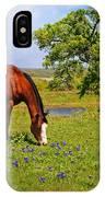 Bluebonnet Trail Delight IPhone Case