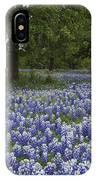Bluebonnets And Oaks IPhone Case