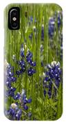 Bluebonnets In The Grass IPhone Case
