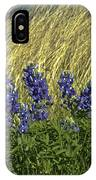 Bluebonnets With Ladybug IPhone Case