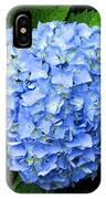 Blues Hues IPhone Case
