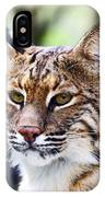 Bob Cat Pose IPhone Case