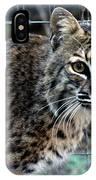 Bobcat Beauty IPhone Case