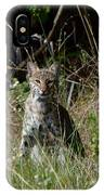 Bobcat On The Prowl IPhone Case
