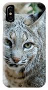 Bobcat's Gaze IPhone Case
