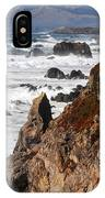 Bodega Bay Color IPhone Case
