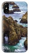 Bodega Head IPhone Case