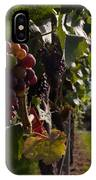 Bodensee Vineyards IPhone Case