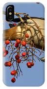 Bohemian Waxwing Eating Rowan Berries IPhone Case