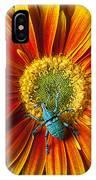 Boll Weevil On Mum IPhone Case