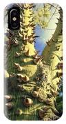 Bombacaceae - Floss Silk Tree - Chorisia Speciosa Hawaii IPhone Case