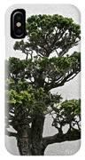 Bonsai Pine IPhone Case