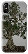 bonsai tree Serissa Foetida live tree art exposed root over rock IPhone Case