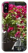 Bougainvillea Bonsai Tree IPhone Case