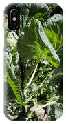 Bountiful Brussel Sprouts IPhone Case