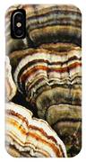 Bracket Fungus 1 IPhone Case