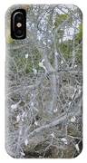 Branches 1 IPhone Case
