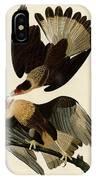 Brasilian Caracara Eagle IPhone Case