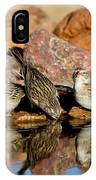 Brewers Sparrows At Waterhole IPhone Case