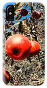 Bright Apples IPhone X Case
