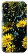 Brillant Flowers Full Of Sunshine. IPhone Case