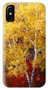 Brilliance Of Autumn On Rib Mountain IPhone Case