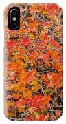 Brilliant Colors IPhone Case