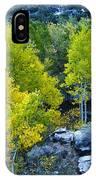 Brilliant Fall Color IPhone Case