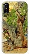 Bristlecone 1 IPhone Case