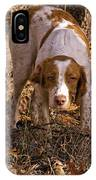 Brittany Spaniel Pixel's Pointed Woodcock IPhone Case