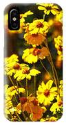 Brittle Bush In Bloom  IPhone Case
