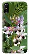Broad Beans IPhone Case