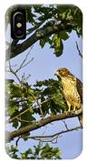 Broad Winged Hawk IPhone Case