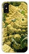 Broccoflower IPhone Case