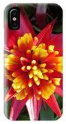 Bromelaid IPhone Case
