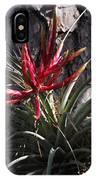 Bromeliaceous IPhone Case