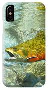 Brook Trout And Artificial Fly IPhone Case