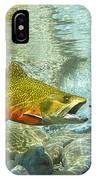 Brook Trout And Silver Doctor IPhone Case