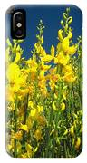 Broom And Carpenter Bee IPhone Case