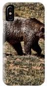 Brown Bears IPhone Case