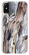Brown Creeper IPhone Case
