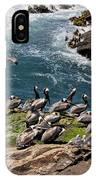 Brown Pelicans And Gulls On The Reef IPhone Case
