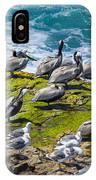 Brown Pelicans IPhone Case