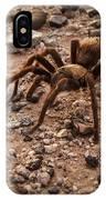 Brown Tarantula IPhone Case