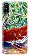 Brown Thrasher In Sunlight IPhone Case