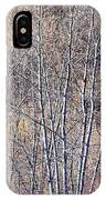 Brown Winter Forest With Bare Trees IPhone Case