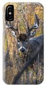 Brush Buck IPhone Case