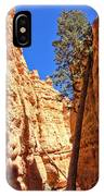 Bryce Canyon Trail Tree IPhone Case
