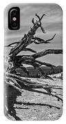 Bryce Canyon Tree Art IPhone Case